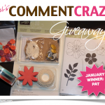 WINNER DRAWN: Video Drawing for January Giveaway
