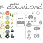 2013-08-20 mds downloads