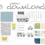 2013-03 MDS downloads