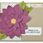 CARD: Gorgeous Poinsettia Wow Card & Video