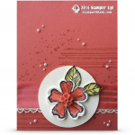 CARD: Gorgeous Watermelon Wonder Flower