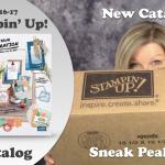 VIDEO & GIVEAWAY: New 2016 Stampin Up Catalog Sneak Peek Haul