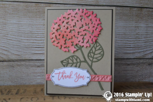 stampin up stampin scoop thoughtful branches linda 3