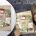 VIDEO & GIVEAWAY: New 2016 Stampin Up Holiday Sneak Peek Haul
