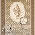 CARD: By the Tide Seashell