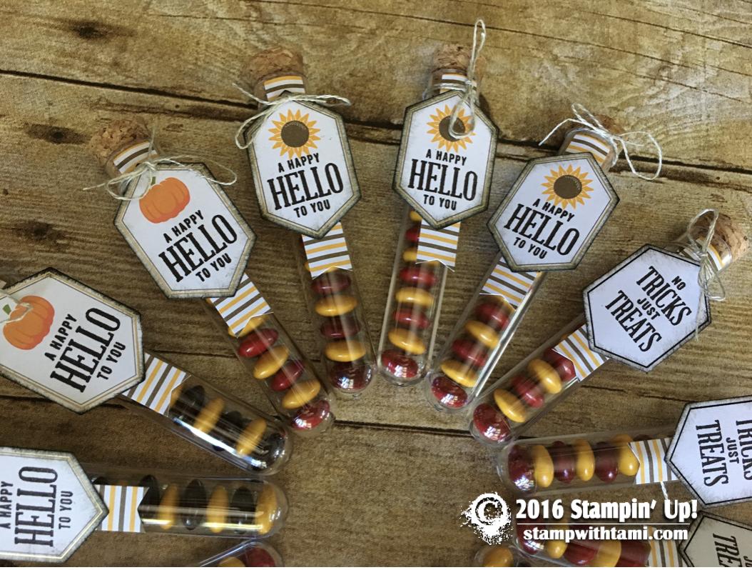 stampin-up-aper-pumpkin-something-good-to-eat-2016