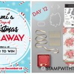 DAY 12 of 12 Days of Christmas Giveaways – Enter Here