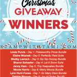 Winners of the 12 Days of Christmas Giveaways Revealed Here