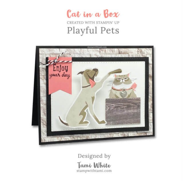 Cat In a Box designed by Tami White