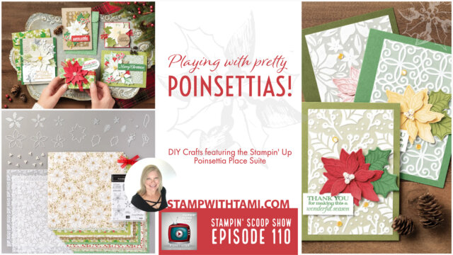 Playing With Poinsettias Place Suite
