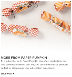 More Paper Pumpkin Kits