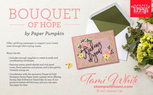 January Paper Pumpkin kits & bundles