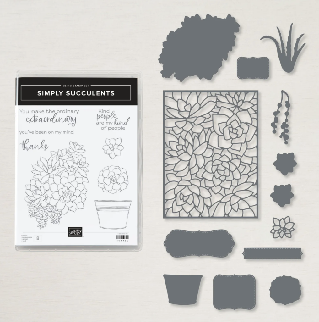 Succulent wow cards