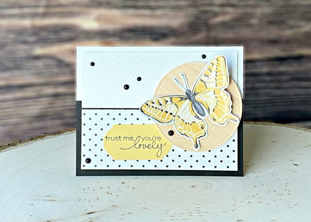 Stampin Up Dandy Garden Suite