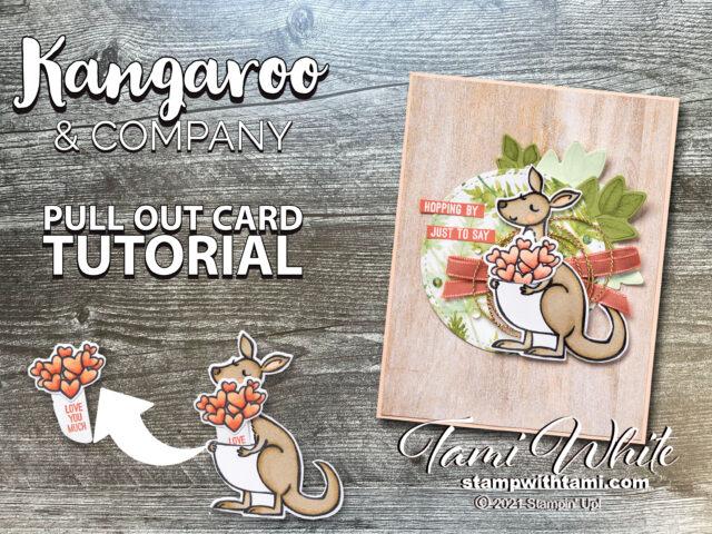 Kangaroo & Company Bundle