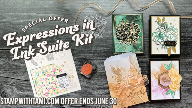 Stampin Up Expressions in Ink Suite