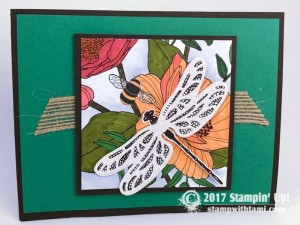 Stampin Up Sale-a-bration Inside the lines DSP